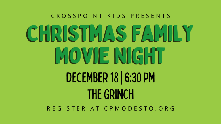 Christmas Family Movie Night in the Park