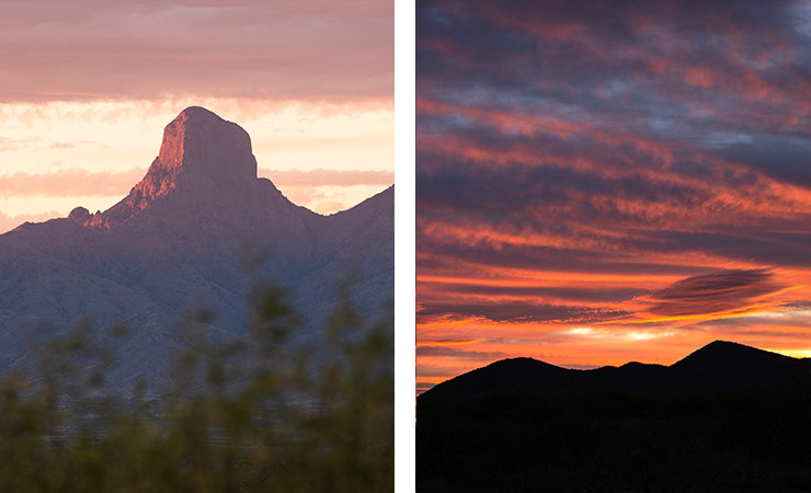 A montage of images featuring Baboquivari Peak and sunset at Buenos Aires NWR