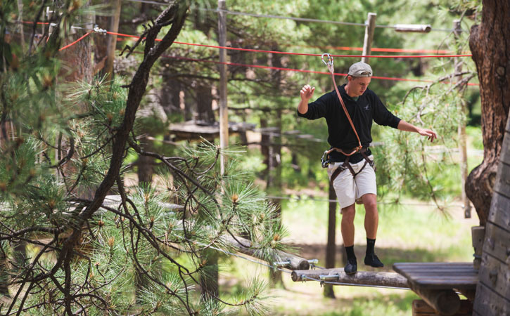 A man in a harness navigates a tricky wooden obstacle course set amongst pine trees