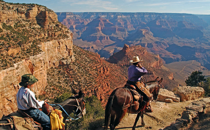 A man and a child ride on horses along a trail in Grand Canyon National Park