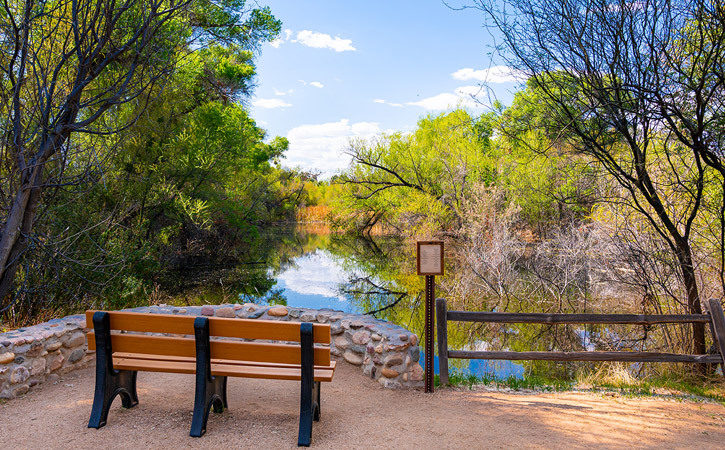 A wooden bench faces a small lookout beside a lake, surrounded by green trees and shrubs.