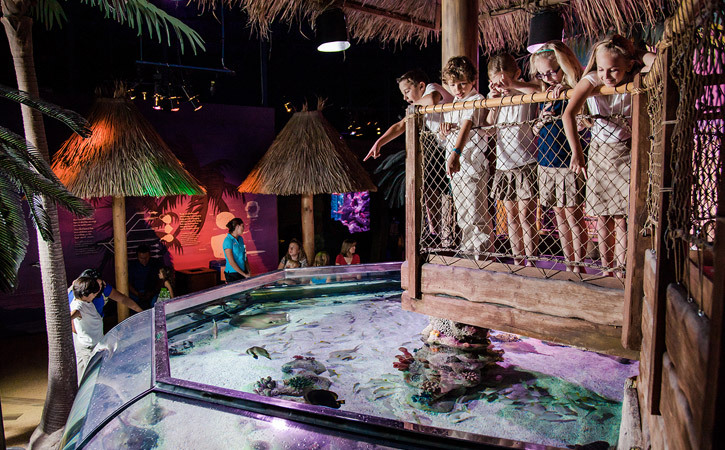 © SEA LIFE Arizona: A group of children plays on a deck overlooking an aquatic tank filled with sea life.