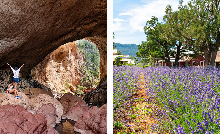 Two images - two hiker stand before an opening of a natural stone bridge. In the other image, a field of lavender sits in front of a red farmhouse.