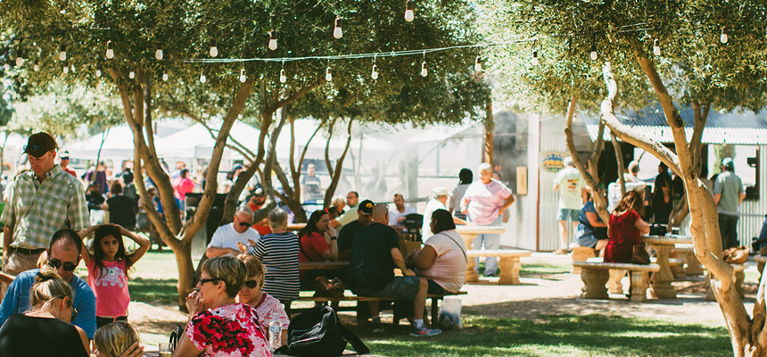 Families enjoy an event held in the grove at Queen Creek Olive Mill in Arizona