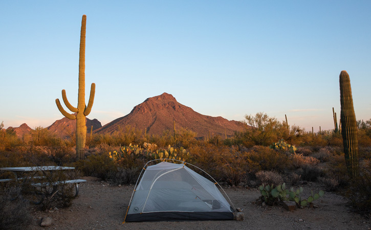 The sun sets, highlighting a mountain peak, cactus and a tent.