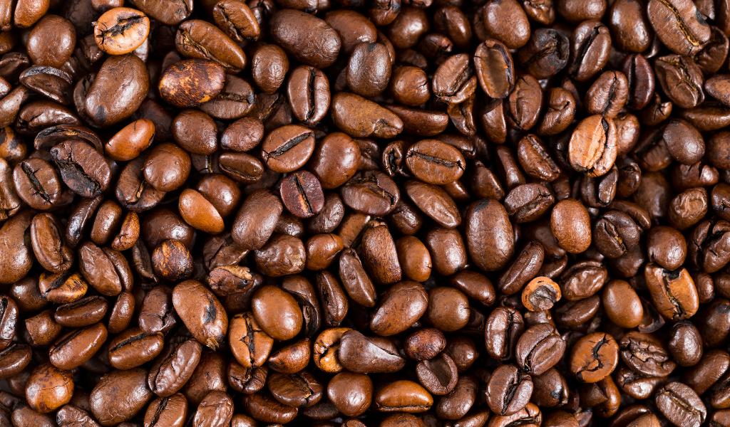 16 productos para abrir una tienda de abarrotes eleventa blog cafe