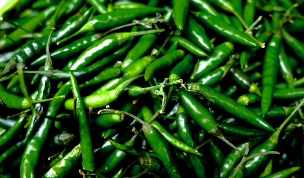 16 productos para abrir una tienda de abarrotes eleventa blog chile