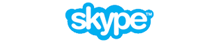 Skype logo chico