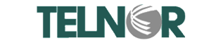 Telnor logo chico