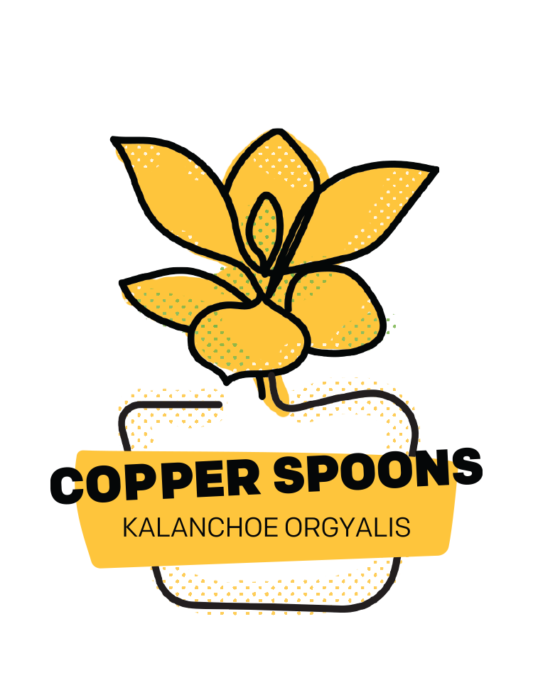 Copper Spoons