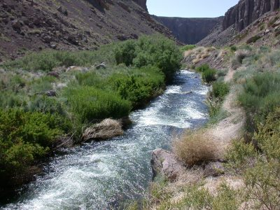 Owens River Gorge