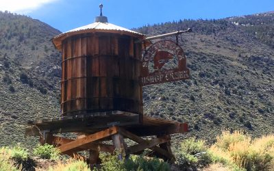 All the Ins & Outs of Camping in Bishop Creek Canyon