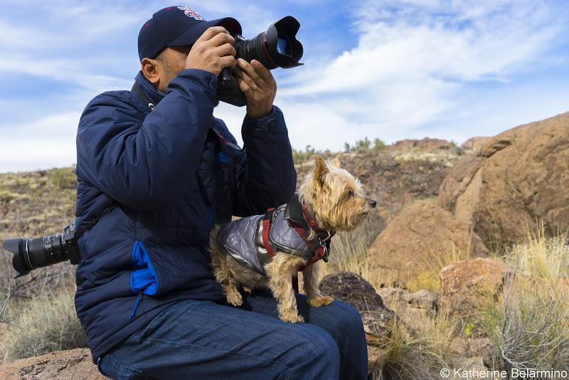 Bishop is a dog-friendly destination