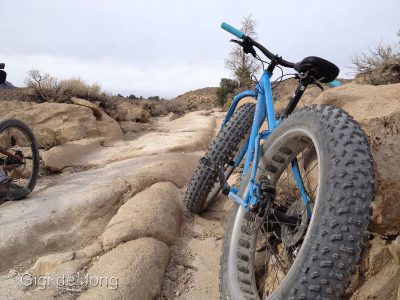 Wagon tracks. Fatbike. Bishop.