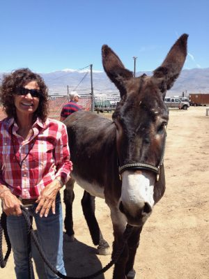 image of a woman standing next to a mule