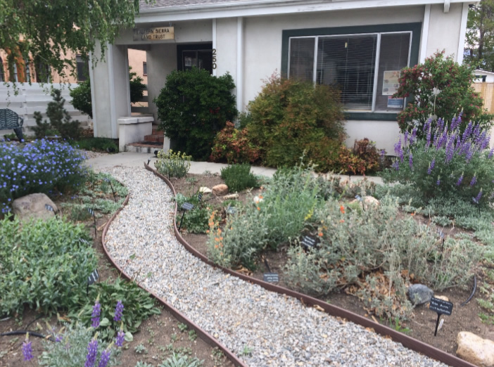 Bishop, California: A Sancturary for birds, butterflies and bees!