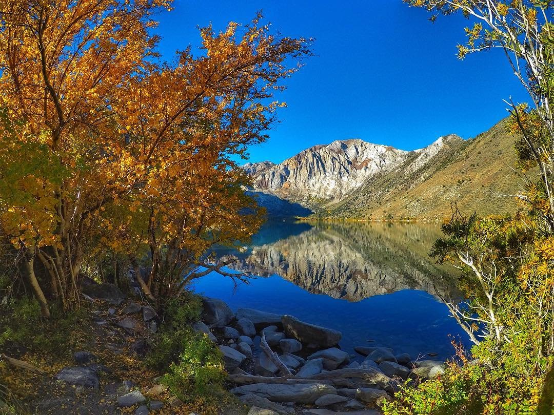 image of fall color and lake