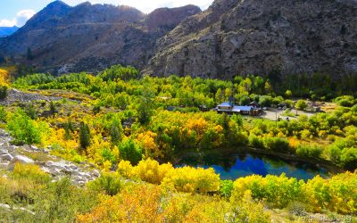 A Guide to Cardinal Mine in Bishop Creek Canyon