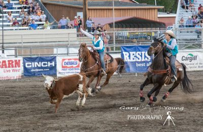 image of two riders on horseback roping a calf