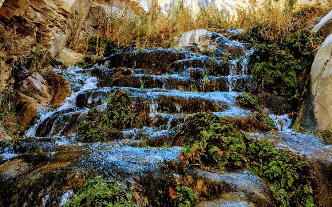 Surprise Canyon Creek Hike