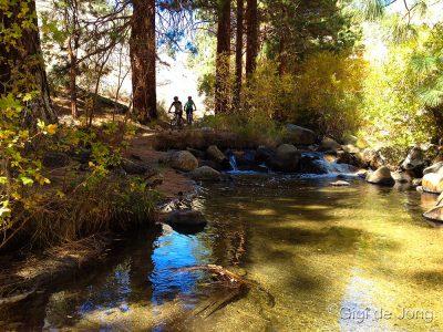 Mountain Biking down Lower Rock Creek. Bishop. CA