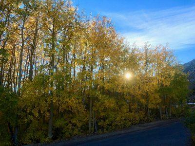 Lake Sabrina. Fall