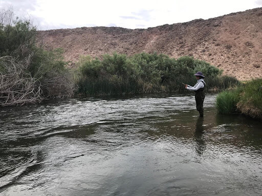 Fishing on Owens River