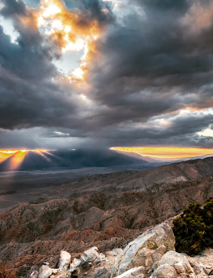9 Must-see Locations at Joshua Tree National Park!