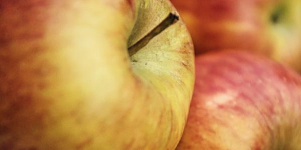 Apple cannabis pipe