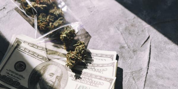 colorado weed prices