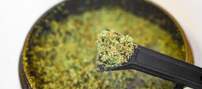 kief weed caviar