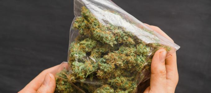 weed in Colorado