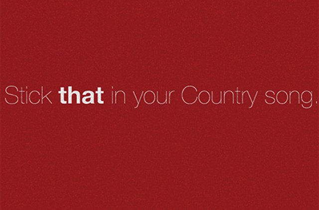 Stick That In Your Country Song - Lyric Video