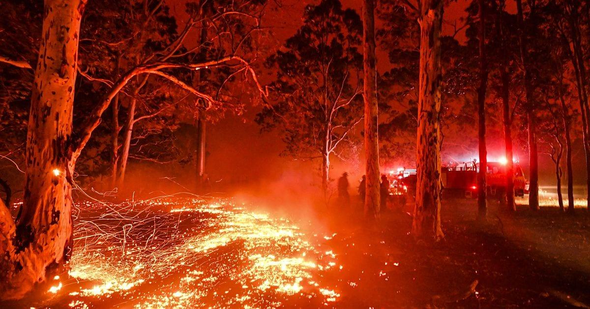 Incendios en Australia: el gobierno se aferra al carbón mientras el país arde
