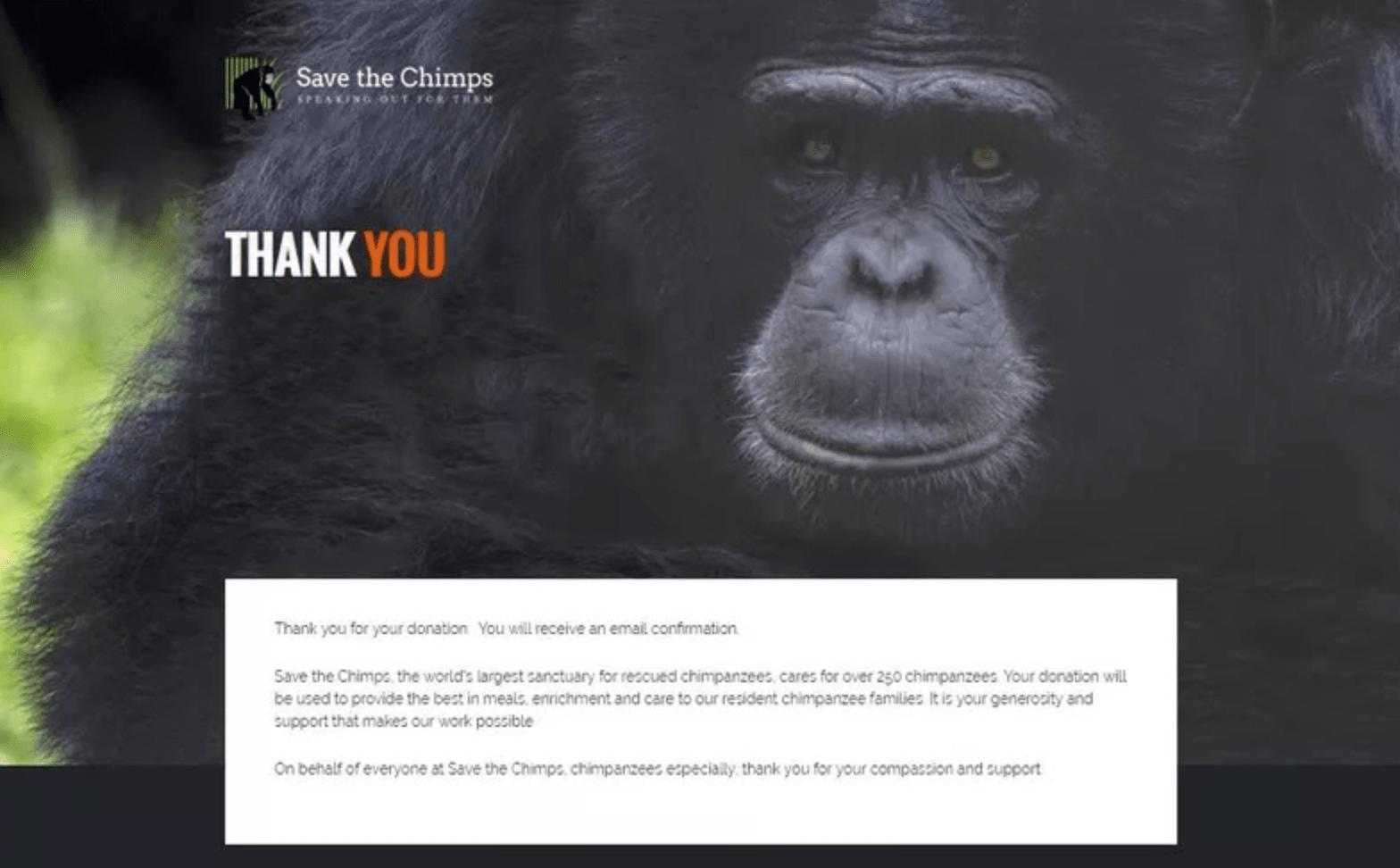 guarda la página de agradecimiento del chimpancé