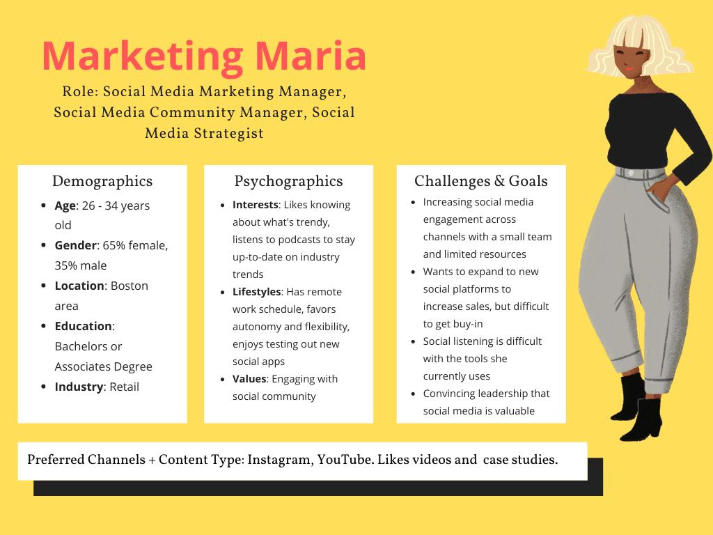 un ejemplo de perfil de audiencia para una campaña publicitaria B2B.