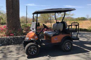 flamingo beach golf carts raised suspension x-model