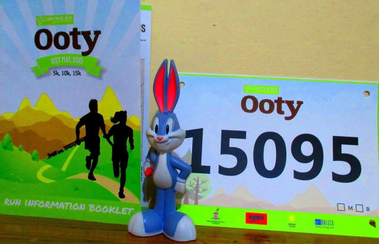 Bugs bunny gets his Go Heritage Run kit