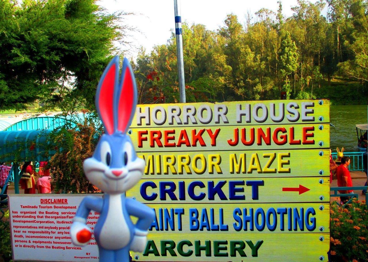 Bugs bunny has too many choices
