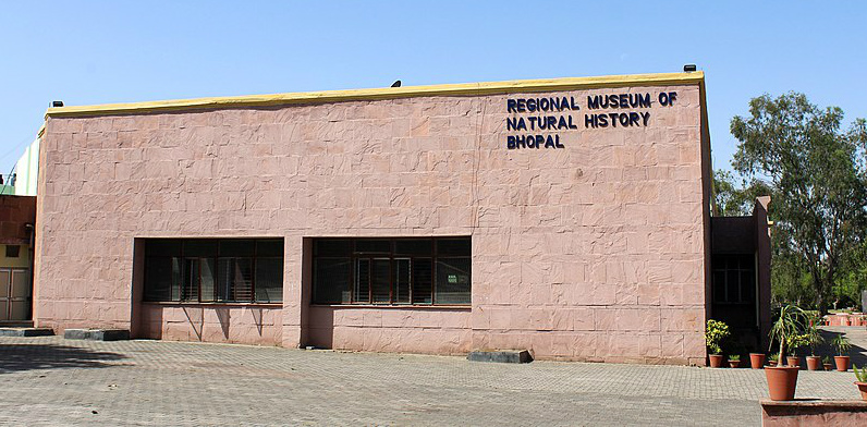 Regional Museum of Natural History