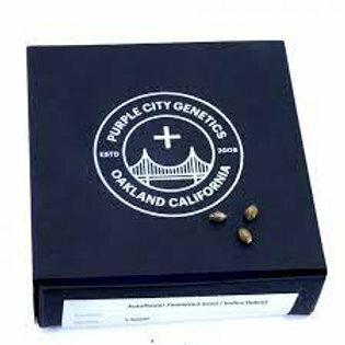 Purple City Genetics Seed Box