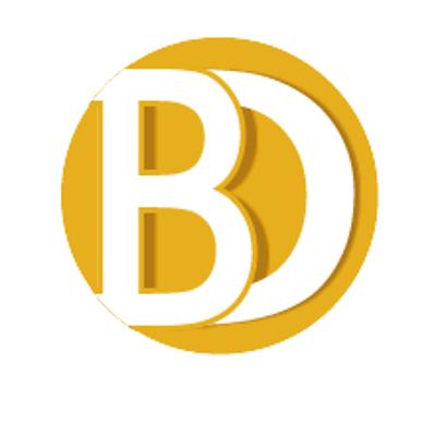 Blockchain Developers Inc.