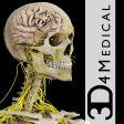 Brain & Nervous Pro