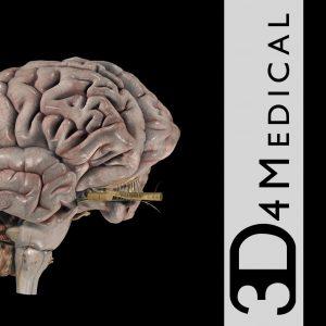 Brain Pro