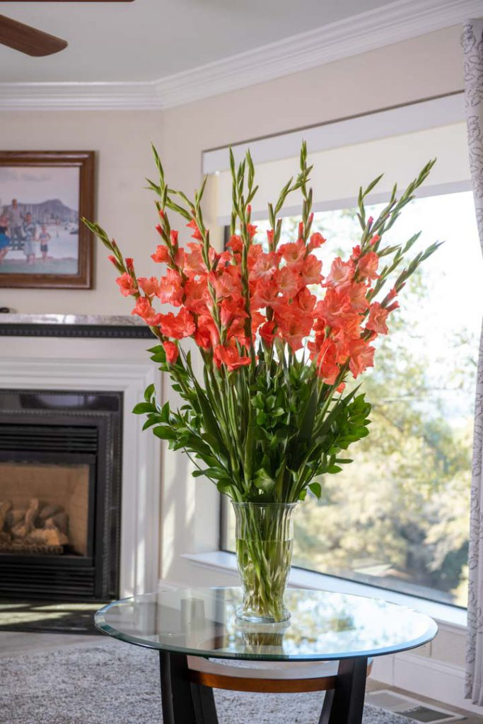Orange Gladiolus cut flower arrangement in a vase in front of a window and fireplace