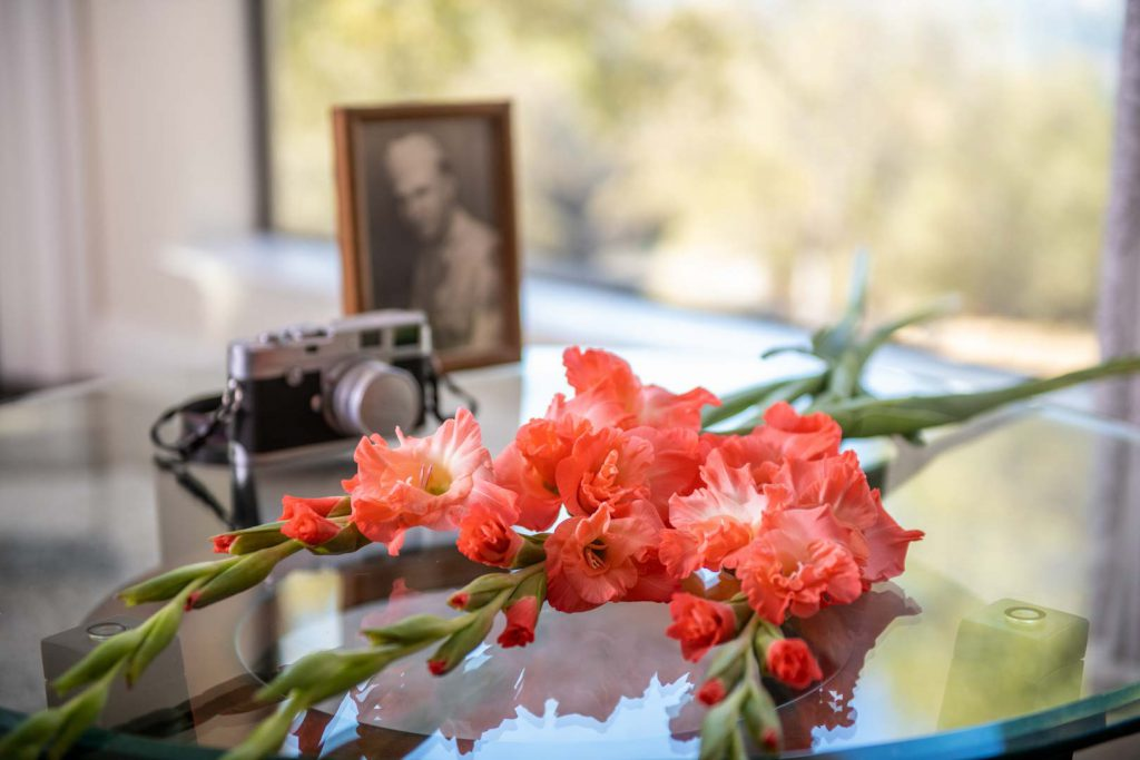 Orange gladioli laying on a table with a camera and a photograph