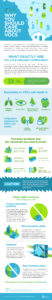 An infographic on VOCs (volatile organic compounds) and why long term exposure can be dangerous