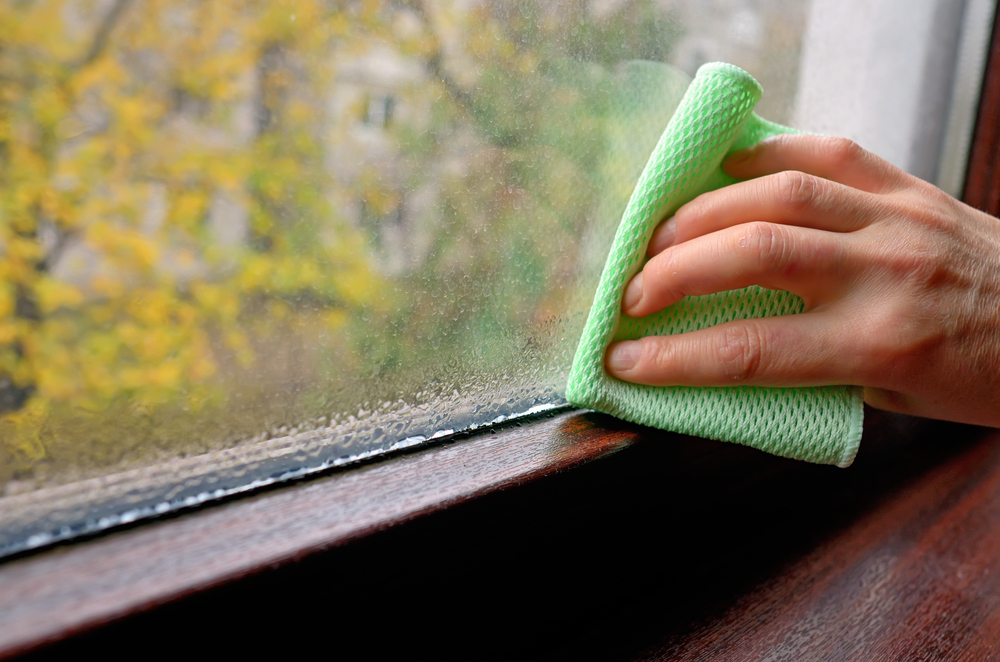 Ask An Expert: Minimize Mold Risk After Wet Weather