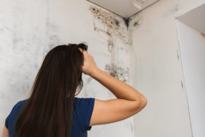 Truths and Myths about Toxic Black Mold