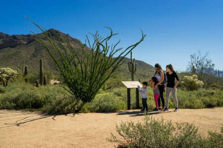 hikers looking at sign